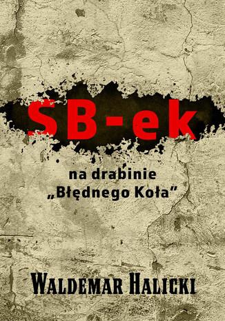 Okładka książki/ebooka SB-ek na drabinie