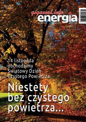 Okładka książki/ebooka Energia Gigawat nr 11/2018