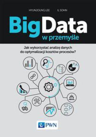 Okładka książki/ebooka Big Data w przemyśle. Jak wykorzystać analizę danych do optymalizacji kosztów procesów?