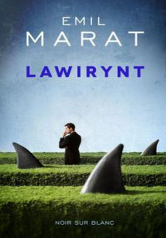 Ebook Lawirynt