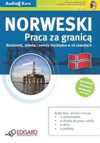 Okładka książki/ebooka Norweski Praca za granicą