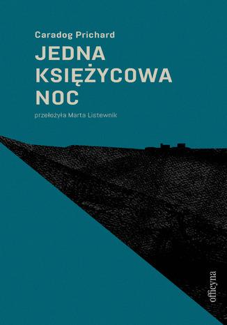 Okładka książki/ebooka Jedna księżycowa noc