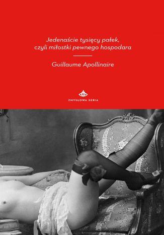 Okładka książki/ebooka Jedenaście tysięcy pałek, czyli miłostki pewnego hospodara