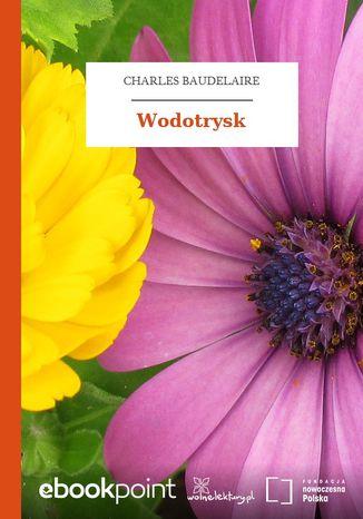 Okładka książki/ebooka Wodotrysk
