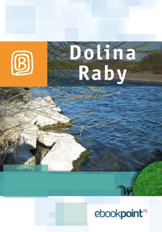 Okładka książki/ebooka Dolina Raby. Miniprzewodnik