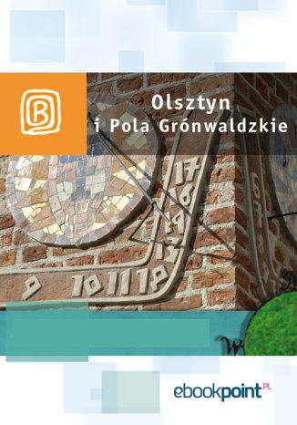 Okładka książki/ebooka Olsztyn i Pola Grunwaldzkie. Miniprzewodnik