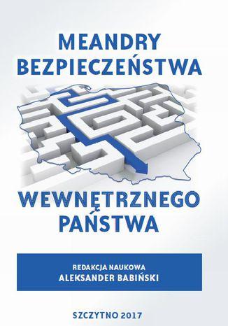 Okładka książki/ebooka Meandry bezpieczeństwa wewnętrznego państwa