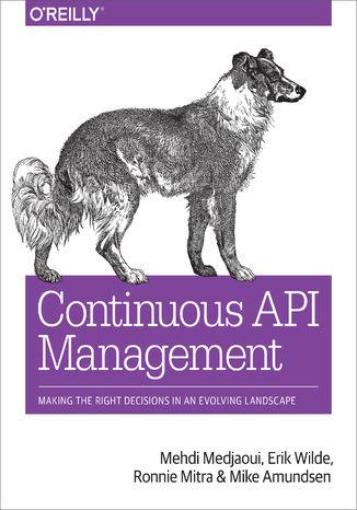 Okładka książki/ebooka Continuous API Management. Making the Right Decisions in an Evolving Landscape