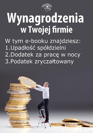 Okładka książki/ebooka Wynagrodzenia w Twojej firmie, wydanie czerwiec 2014 r. część I