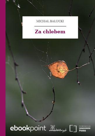 Okładka książki/ebooka Za chlebem