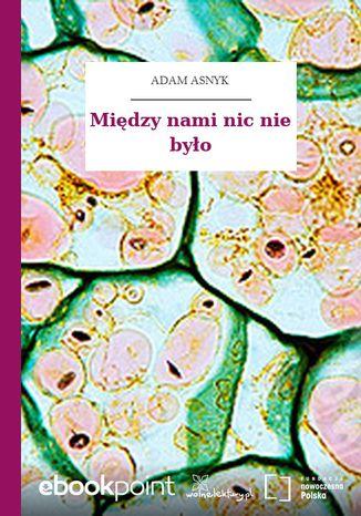 Okładka książki/ebooka Między nami nic nie było