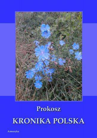 Okładka książki/ebooka Kronika polska Prokosza