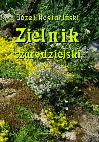 Okładka książki/ebooka Zielnik czarodziejski to jest zbiór przesądów o roślinach