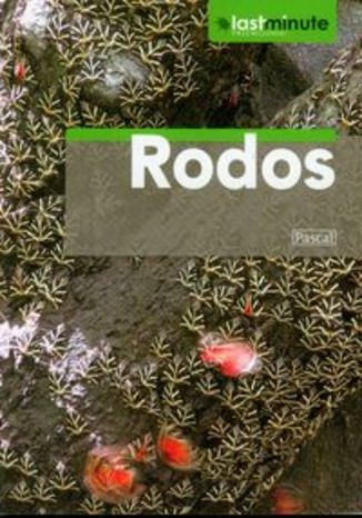Okładka książki/ebooka Rodos. Przewodnik Pascal Last Minute