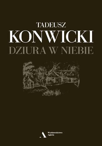 Okładka książki/ebooka Dziura w niebie
