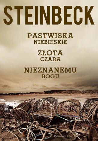 Okładka książki/ebooka Pastwiska Niebieskie, Złota Czara, Nieznanemu bogu