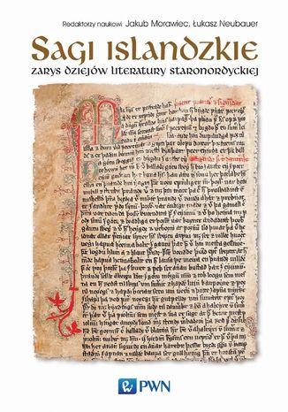 Okładka książki/ebooka Sagi islandzkie. Zarys dziejów literatury staronordyckiej