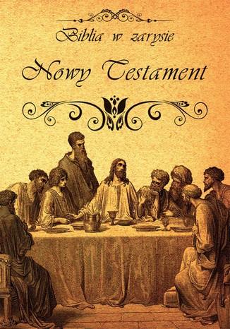 Okładka książki Biblia w zarysie. Nowy Testament