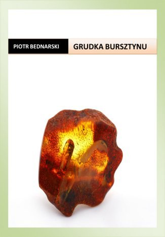 Okładka książki Grudka bursztynu