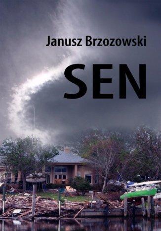 Okładka książki Sen