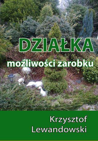 Okładka książki/ebooka Działka. Możliwości zarobku