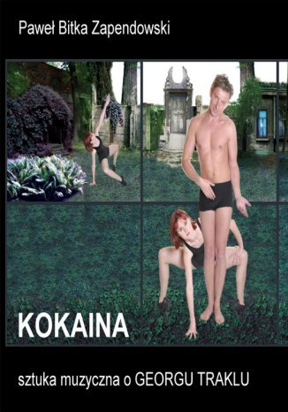 Ebook Kokaina