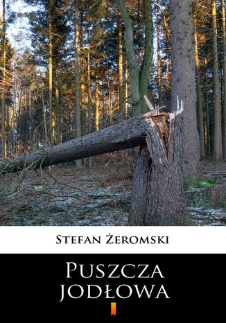 Okładka książki Puszcza jodłowa