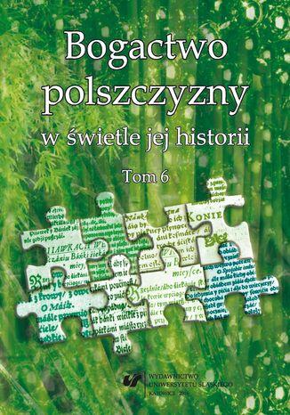 Okładka książki Bogactwo polszczyzny w świetle jej historii. T. 6
