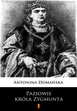 Okładka książki/ebooka Paziowie króla Zygmunta