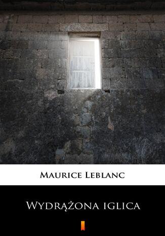 Okładka książki Wydrążona iglica