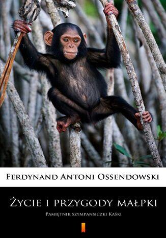 Okładka książki Życie i przygody małpki. Pamiętnik szympansiczki Kaśki