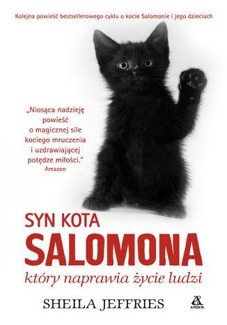 Okładka książki Syn kota Salomona, który naprawia życie ludzi