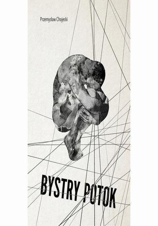 Okładka książki Bystry Potok