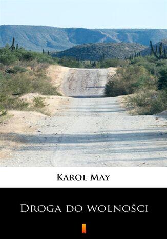 Okładka książki Leśna Różyczka (Tom 6). Leśna Różyczka. Droga do wolności
