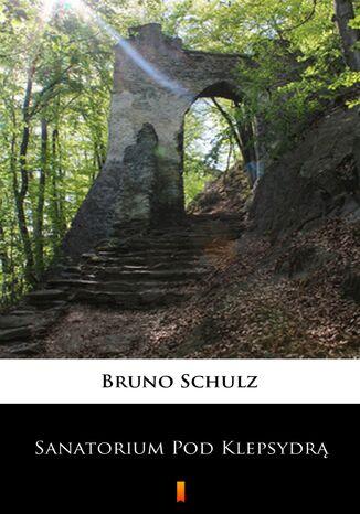 Okładka książki Sanatorium Pod Klepsydrą