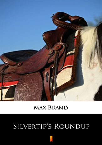 Okładka książki/ebooka Silvertips Roundup