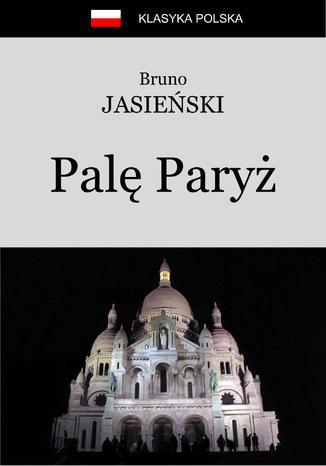 Okładka książki Palę Paryż