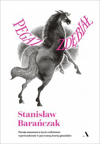 Okładka książki Pegaz zdębiał. Poezja nonsensu a życie codzienne: wprowadzenie w prywatną teorię gatunków