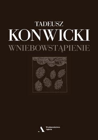 Okładka książki/ebooka Wniebowstąpienie