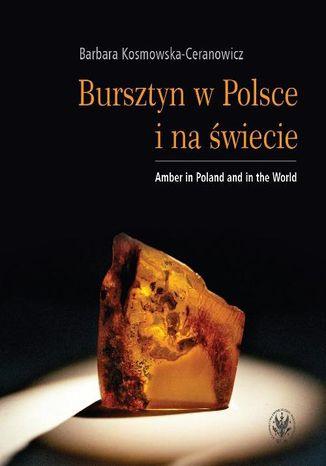 Okładka książki Bursztyn w Polsce i na świecie. Amber in Poland and in the World