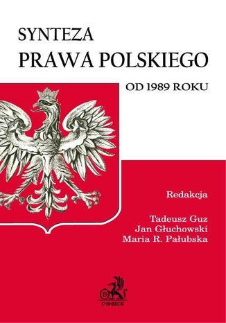 Okładka książki Synteza prawa polskiego od 1989 roku