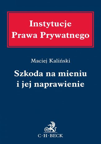 Okładka książki/ebooka Szkoda na mieniu i jej naprawienie