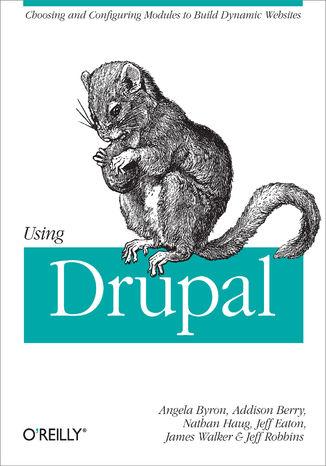 Okładka książki/ebooka Using Drupal