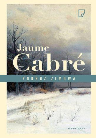 Okładka książki/ebooka Podróż zimowa