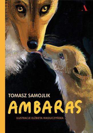 Okładka książki/ebooka Ambaras