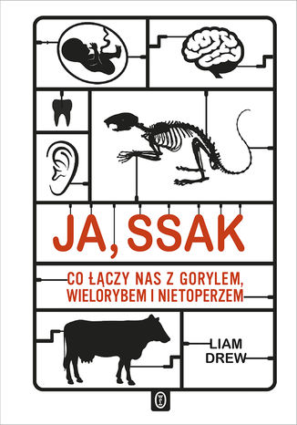 Okładka książki Ja, ssak. Co łączy nas z gorylem, wielorybem i nietoperzem