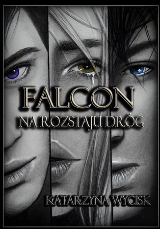Ebook Falcon II