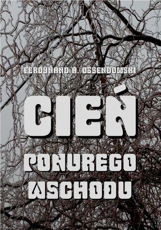 Okładka książki Cień ponurego Wschodu. Za kulisami życia rosyjskiego