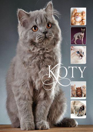 Okładka książki Koty_160