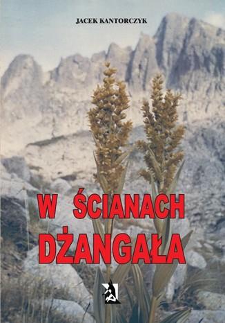 Okładka książki/ebooka W ścianach Dżangała